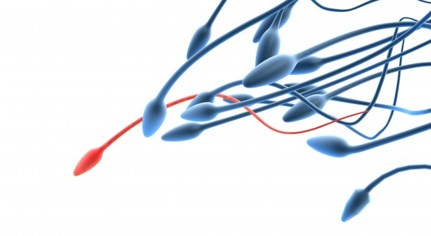 Acupuncture for male infertility